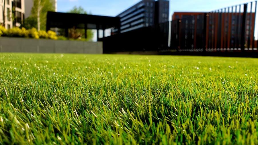 דשא סינטטי לגינה - מתי כדאי ולמה לשים לב